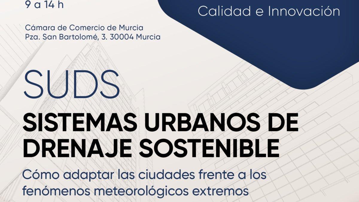 Sistemas urbanos de drenaje Sostenible 2 FRECOM