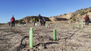 AFAREM y ARBA hacen la primera plantación en la cantera abandonada de Los Ásperos 4 FRECOM
